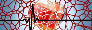 מניעת נזקי מחלות לב וכלי דם