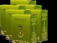 שמן מרווה מרושתת – אומגה 3 צמחית – מארז שישייה