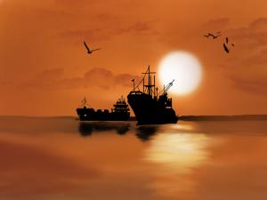 זיהום האוקיאנוס - אומגה 3